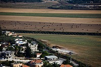 Aerial photograph of the agriculture fields of the Sharon