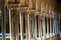 France, Languedoc, Arles_Sur_Tech, abbey, cloister.