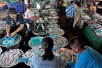 SHRIMP AND SQUID SELLER, FISH MARKET, BANG SAPHAN, THAILAND, ASIA
