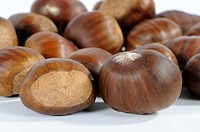 Sweet, Chestnuts, Castanea, sativa,