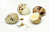 Quail, eggs,