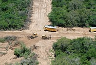 Deforestation in the Gran Chaco near Mariscal Estigarribia, Paraguay