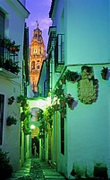 Córdoba Andalusia  Spain: Calleja de las Flores, in the background Bell tower or minaret of the mosque-cathedral