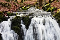 Small river and waterfall over rocks, running through a wooded area, winter Scotalnd, UK, United Kingdom