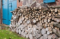 Germany, Kratzeburg, Stack of firewood near country house