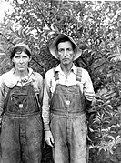BERRY PICKERS, 1940.Berry Pickers from Arkansas working in Berrien County, Michigan. Photographed by John Vachon, 1940.