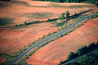 Aerial view of a road on farmland