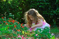 Girl picking flowers in a lawn