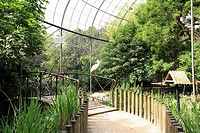 Paris, garden plants, the big aviary
