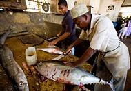 tuna in fish market, Stone Town, Zanzibar, Tanzania 06_23_2007