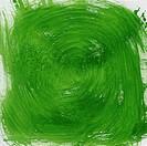 green vortex abstract