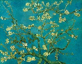 VAN GOGH: ALMOND BLOSSOM.Branch of an Almond Tree in Blossom. Oil on canvas, 1890, by Vincent Van Gogh.
