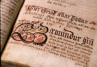 Detail of Iceland Manuscript, written between the 12th and 14th centuries  These manuscripts contain the Icelandic Sagas, and are held at the Thjodarb...