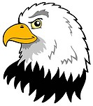 American eagles head _ isolated illustration.