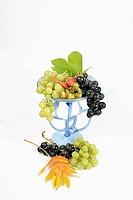 trauben 7_ grapes 7