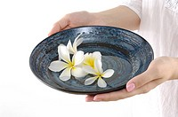 Close_up of a woman holding a bowl containing frangipani flowers