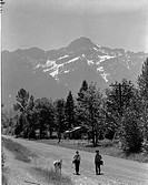 USA, Washington, Cascade Mountains, Rear view of boys walking with dog in mountain scenery