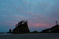 Rock formations in the ocean, Second Beach, Olympic National Park, Washington State, USA