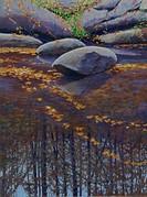 River Refuge