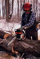 Lumberjack Oregon USA