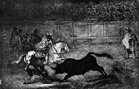 La Tauromaquia Series Francisco Goya y Lucientes 1746_1828 Spanish