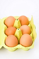 six beige eggs on a white background