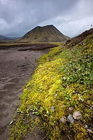 Mountain in Fjallabak Natural Reserve  Iceland