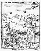 PERU: HARVESTING POTATOES.Native Peruvians harvesting potatoes. Drawing from 'El primer nueva cronica y buen gobierno [The first new chronicle and goo...