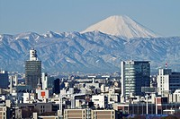 Tokyo skyline with Mount Fuji in background