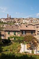 Montalcino, Tuscany.