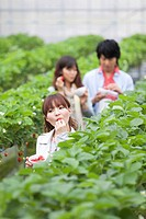Young people eating strawberries