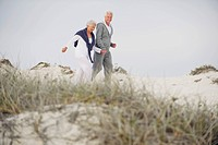 Senior couple walking on the beach (thumbnail)