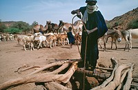 TUAREG NOMADS, NIGER West Africa. This nomadic tribe still make a living as traders. .