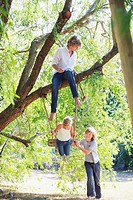 Smiling little siblings playing in tree swing