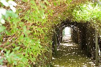 Narrow path passing through a tunnel