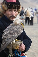 Kazakh hunter with hooded Saker Falcon Falco cherrug, Eagle Hunters Festival, Bayan_Ulgii, Western Mongolia, october