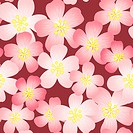 Abstract cherry_flowers background
