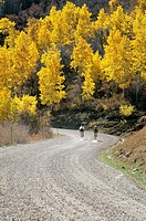Couple bicycling gravel road in fall near Moab, Utah, USA