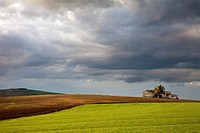 Images of the countryside of Andalucia in the evening