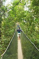 enjoying a jungle canopy walk at Poring Hot Springs in Sabah, Borneo, Malaysia