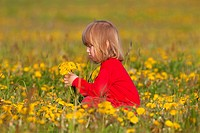 blond, boy, Caucasian, child, color, dandelion, field, flower, grass, meadow, nature, people, picking, red, rural, sitting, spring, yellow