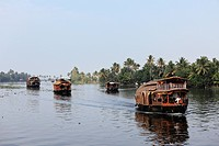 India, South India, Kerala, Alappuzha, View of housebots in kodoor river