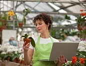 Hispanic woman using laptop in plant nursery