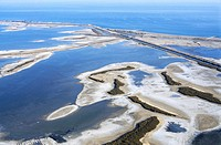 Salt marsh in Camargue, aerial view