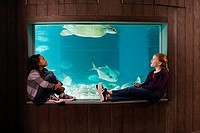 Girls watching sea turtle in aquarium