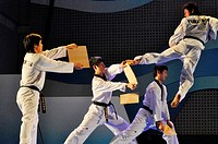 Seoul (South Korea): taekwondo show in Seoul Square