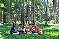pic nic under palm trees in Anse des Cascades, Sainte-Rose Reunion island, overseas departement of France, Indian Ocean