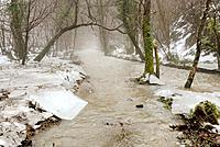 The River Wyre in woodland near Llanrhystud, Wales after the flood and thaw with broken ice sheets lining the river bank, Winter.