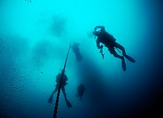 Scuba divers near anchor line in deep water, San Clemente Island, California, USA
