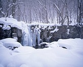 Choshi_Otaki Waterfall, Oirase mountain stream, Aomori, Tohoku, Japan